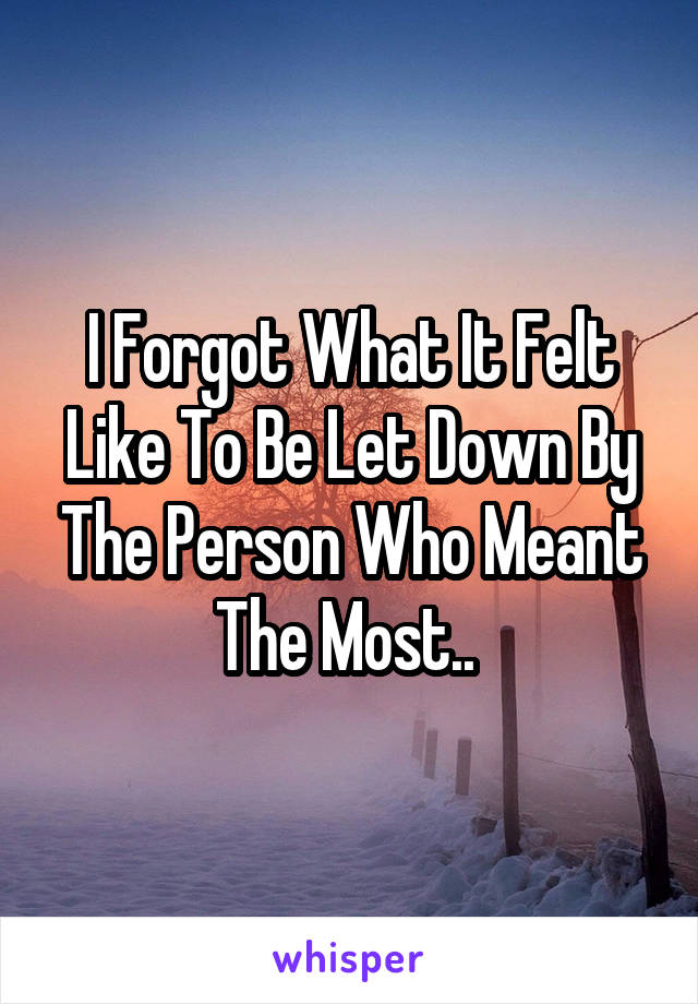 I Forgot What It Felt Like To Be Let Down By The Person Who Meant The Most..
