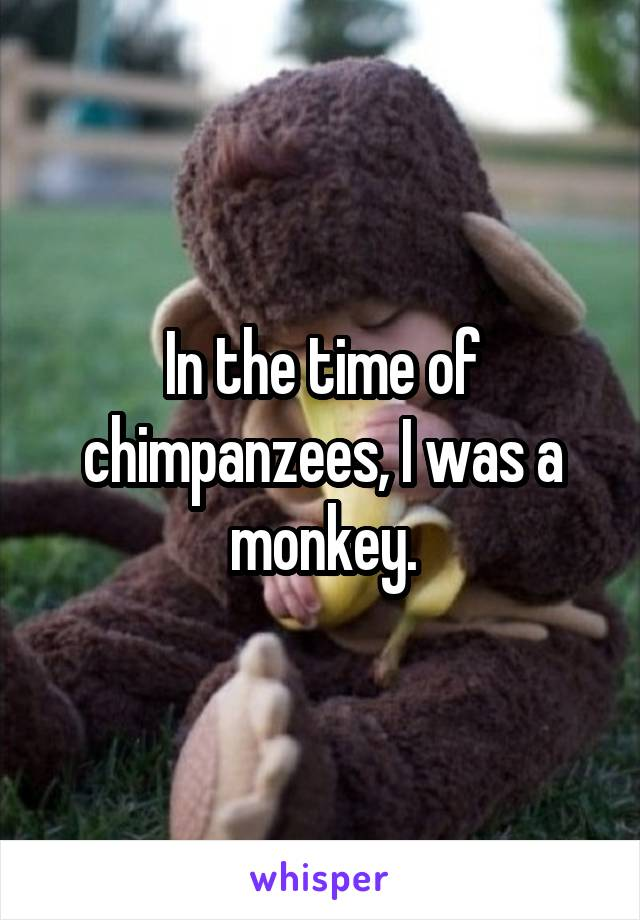 In the time of chimpanzees, I was a monkey.