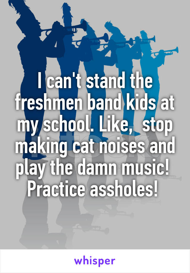 I can't stand the freshmen band kids at my school. Like,  stop making cat noises and play the damn music!  Practice assholes!