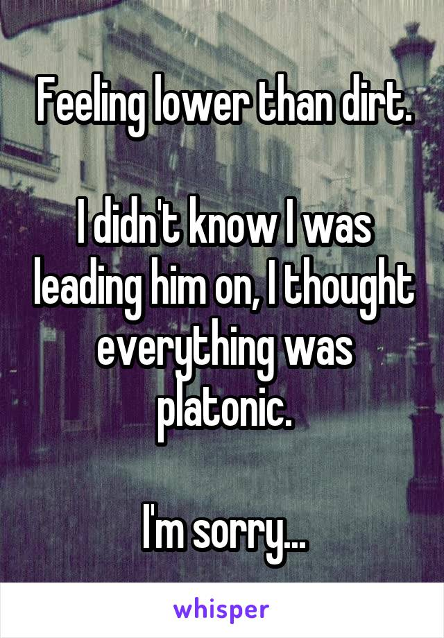 Feeling lower than dirt.  I didn't know I was leading him on, I thought everything was platonic.  I'm sorry...
