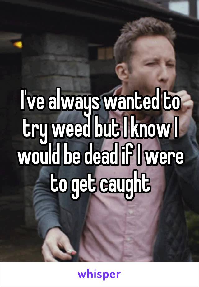 I've always wanted to try weed but I know I would be dead if I were to get caught