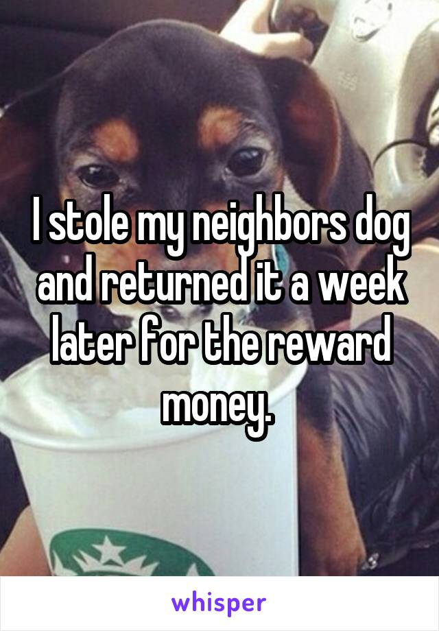 I stole my neighbors dog and returned it a week later for the reward money.