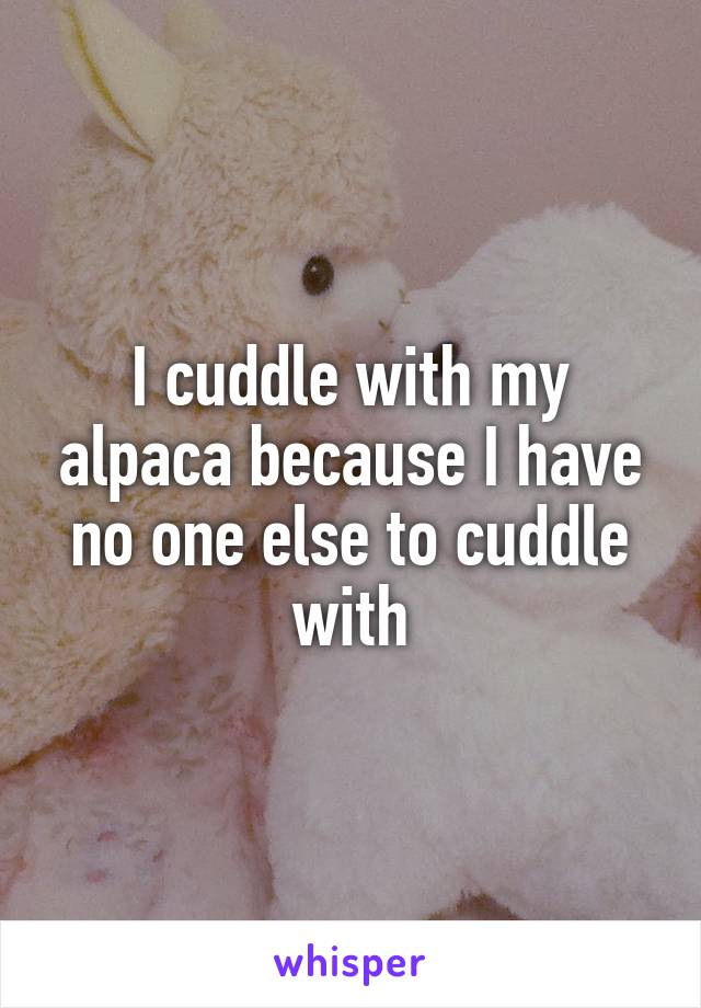 I cuddle with my alpaca because I have no one else to cuddle with