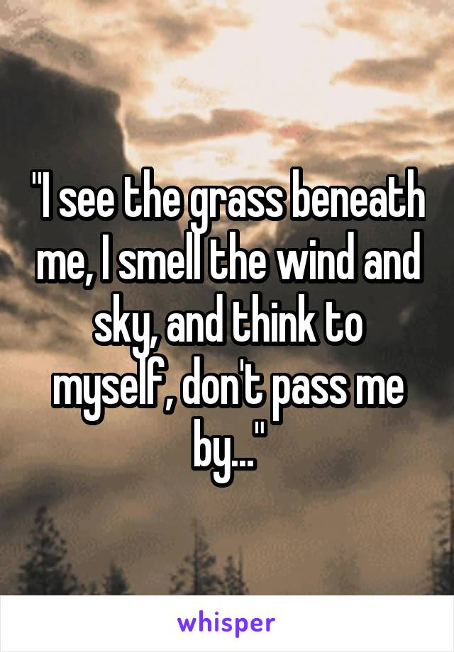 """I see the grass beneath me, I smell the wind and sky, and think to myself, don't pass me by..."""