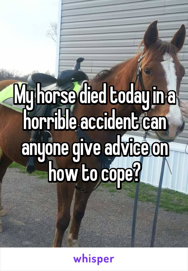 My horse died today in a horrible accident can anyone give advice on how to cope?