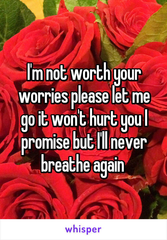 I'm not worth your worries please let me go it won't hurt you I promise but I'll never breathe again