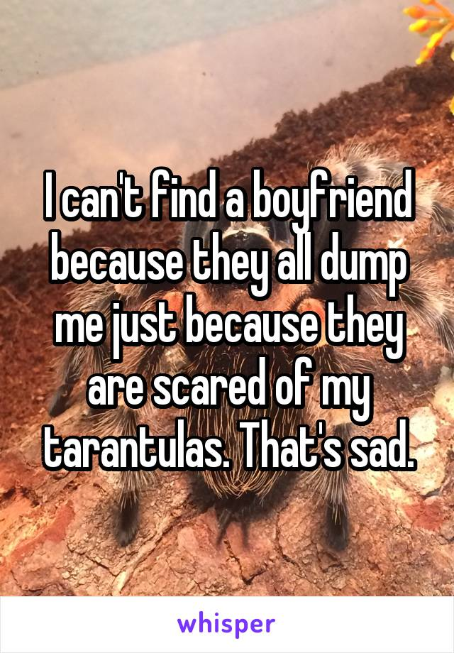 I can't find a boyfriend because they all dump me just because they are scared of my tarantulas. That's sad.