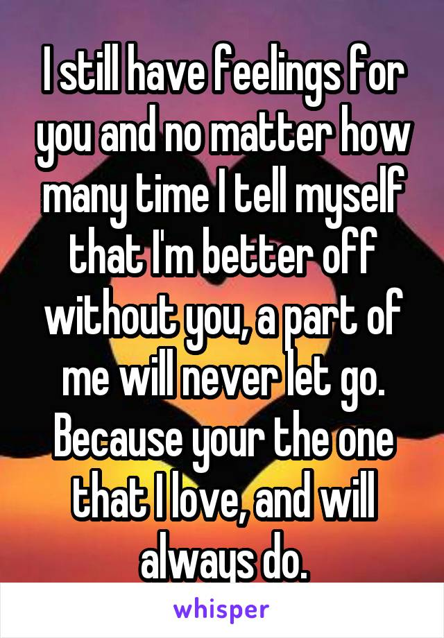 I still have feelings for you and no matter how many time I tell myself that I'm better off without you, a part of me will never let go. Because your the one that I love, and will always do.