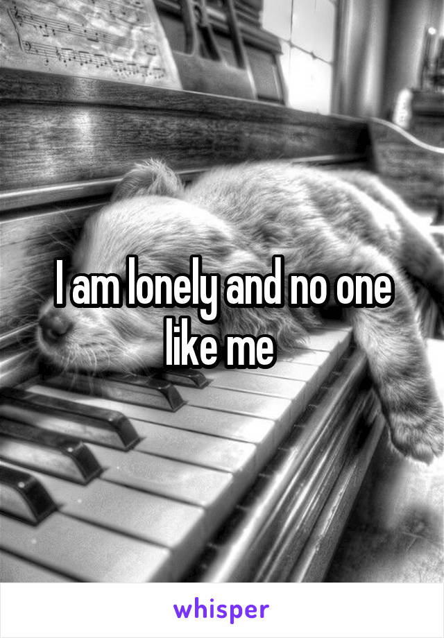 I am lonely and no one like me