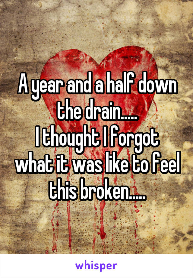A year and a half down the drain..... I thought I forgot what it was like to feel this broken.....