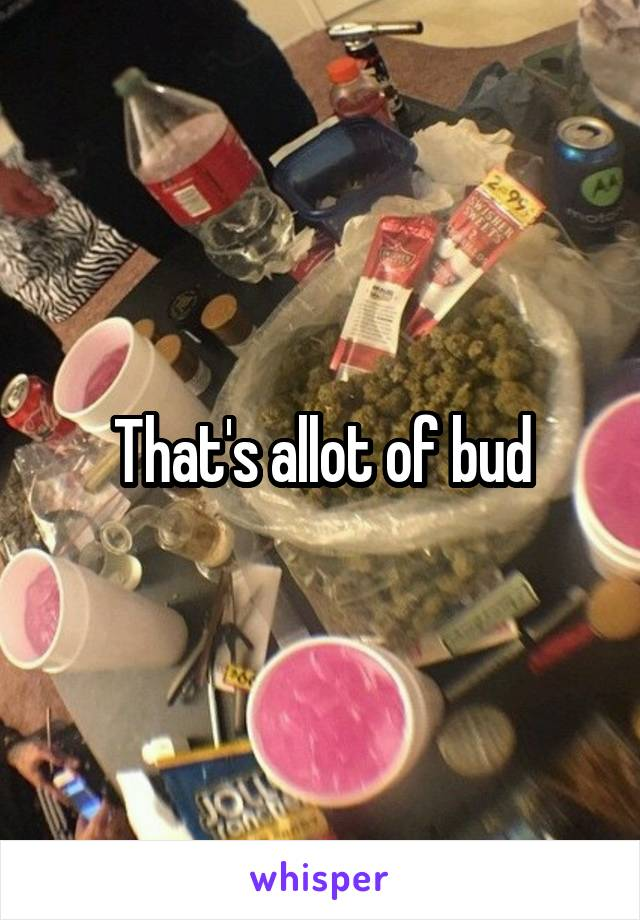 That's allot of bud