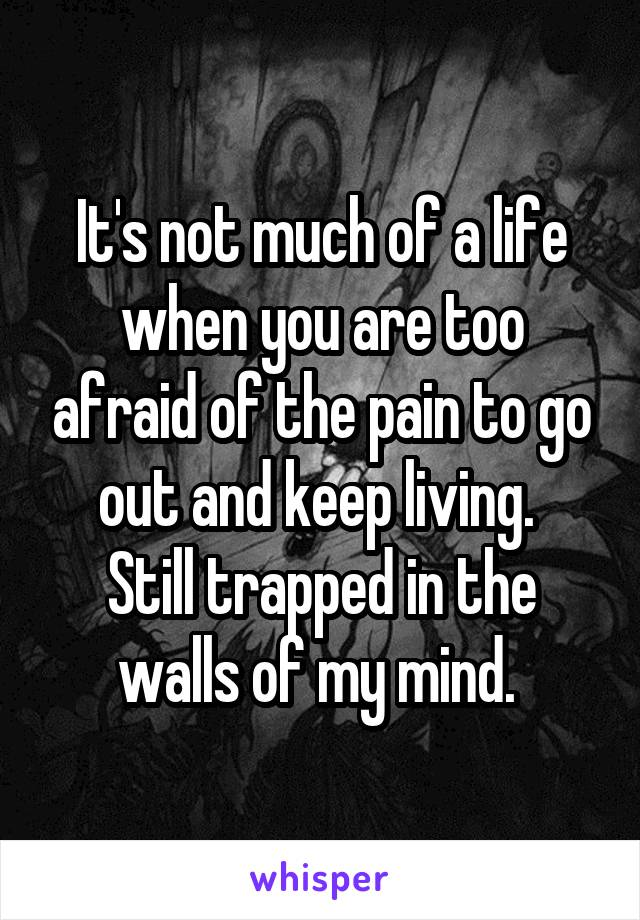 It's not much of a life when you are too afraid of the pain to go out and keep living.  Still trapped in the walls of my mind.