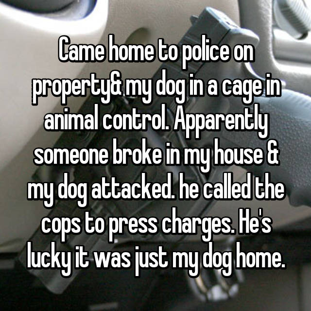 Came home to police on property& my dog in a cage in animal control. Apparently someone broke in my house & my dog attacked. he called the cops to press charges. He's lucky it was just my dog home.