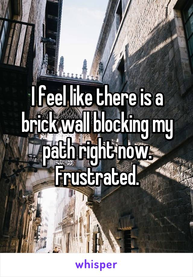 I feel like there is a brick wall blocking my path right now. Frustrated.