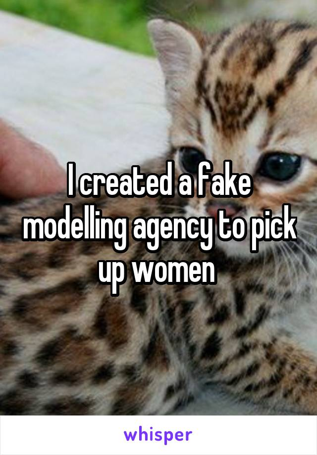 I created a fake modelling agency to pick up women