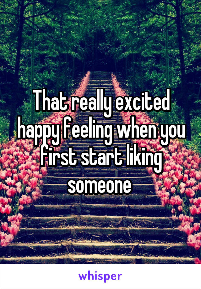 That really excited happy feeling when you first start liking someone