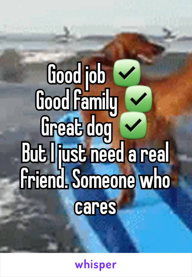 Good job ✅ Good family ✅ Great dog ✅ But I just need a real friend. Someone who cares