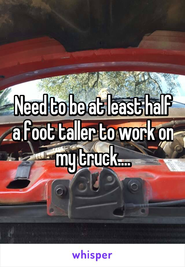 Need to be at least half a foot taller to work on my truck....