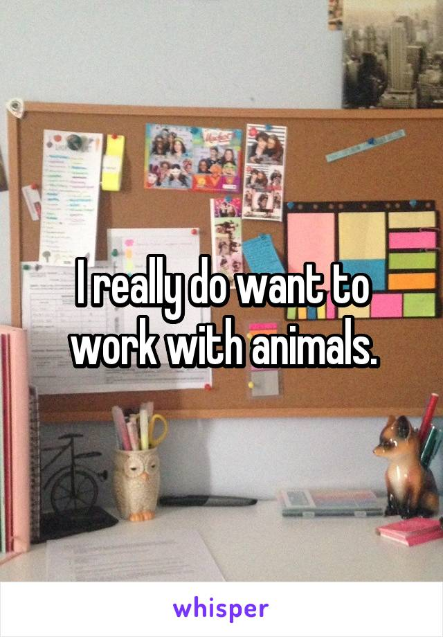 I really do want to work with animals.