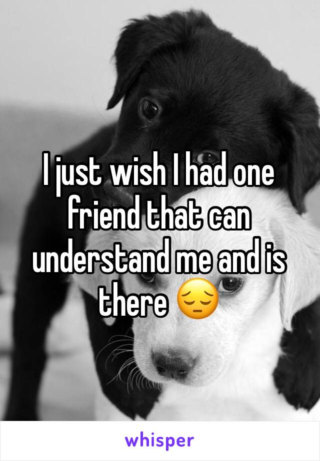 I just wish I had one friend that can understand me and is there 😔