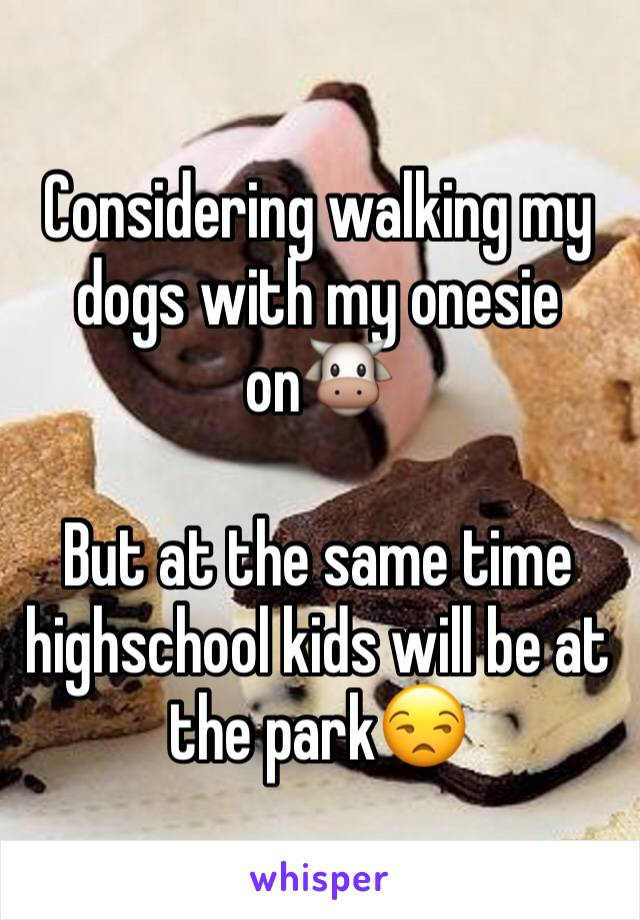 Considering walking my dogs with my onesie on🐮   But at the same time highschool kids will be at the park😒