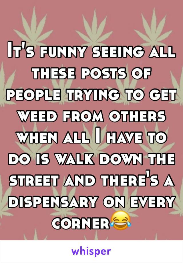 It's funny seeing all these posts of people trying to get weed from others when all I have to do is walk down the street and there's a dispensary on every corner😂