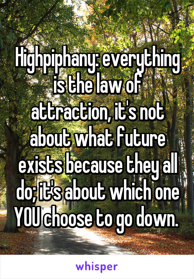 Highpiphany: everything is the law of attraction, it's not about what future exists because they all do; it's about which one YOU choose to go down.
