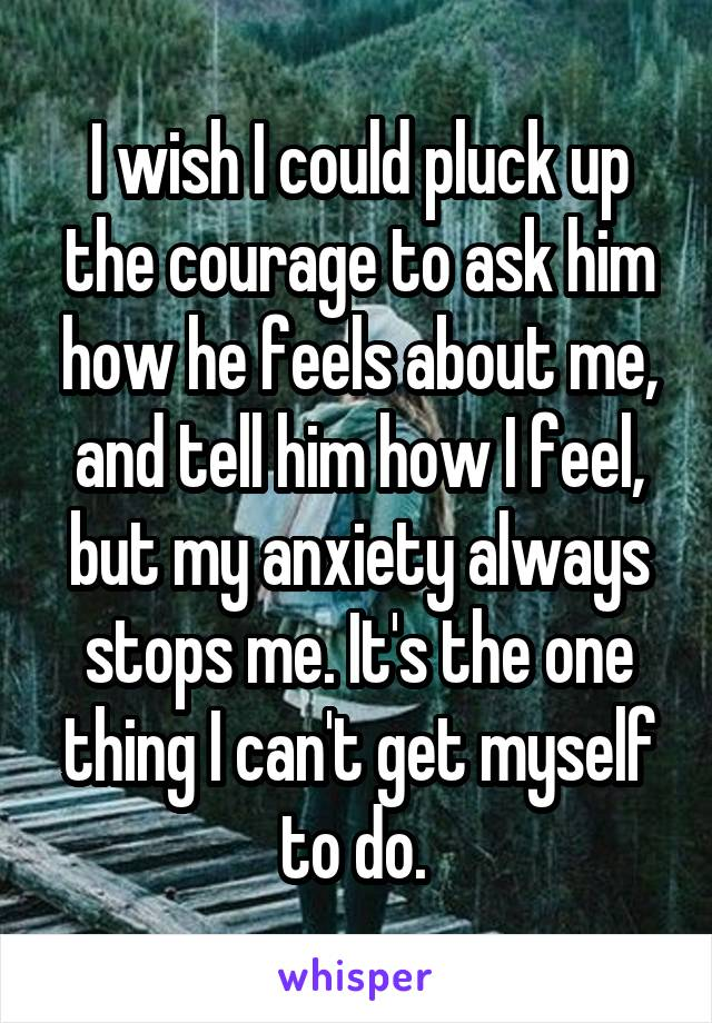 I wish I could pluck up the courage to ask him how he feels about me, and tell him how I feel, but my anxiety always stops me. It's the one thing I can't get myself to do.
