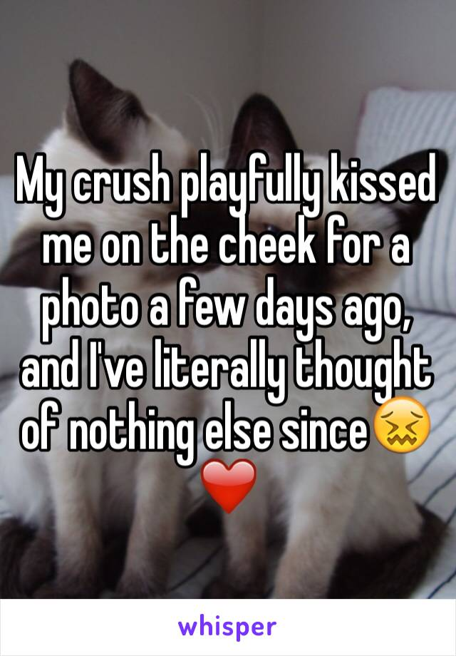 My crush playfully kissed me on the cheek for a photo a few days ago, and I've literally thought of nothing else since😖❤️