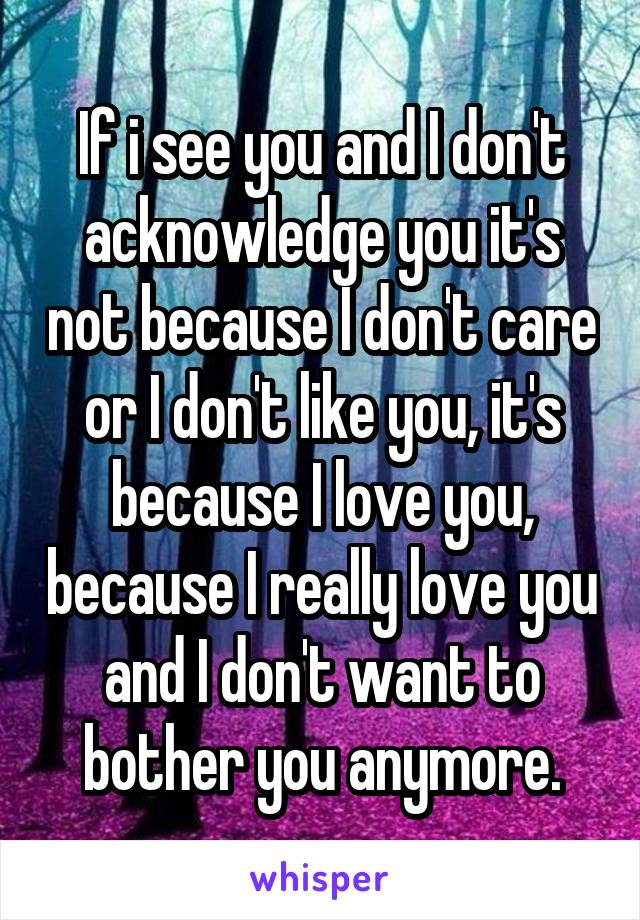 If i see you and I don't acknowledge you it's not because I don't care or I don't like you, it's because I love you, because I really love you and I don't want to bother you anymore.