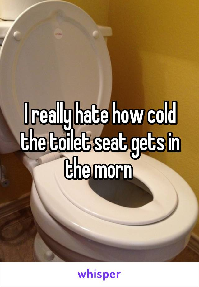 I really hate how cold the toilet seat gets in the morn