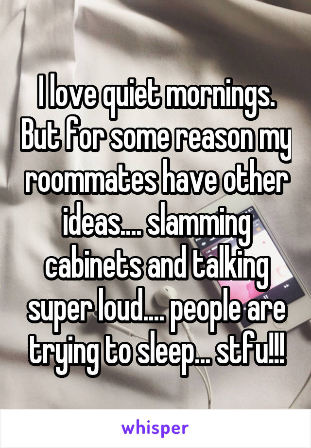 I love quiet mornings. But for some reason my roommates have other ideas.... slamming cabinets and talking super loud.... people are trying to sleep... stfu!!!