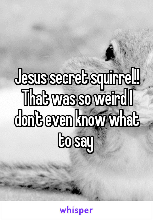 Jesus secret squirrel!! That was so weird I don't even know what to say