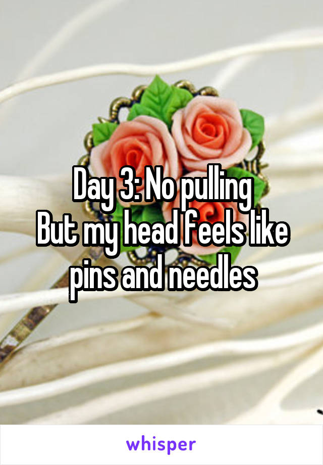 Day 3: No pulling But my head feels like pins and needles