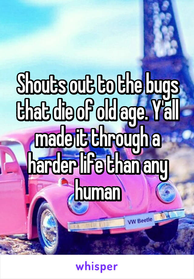 Shouts out to the bugs that die of old age. Y'all made it through a harder life than any human