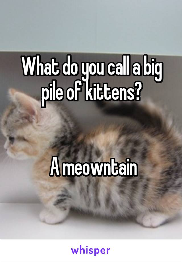 What do you call a big pile of kittens?     A meowntain