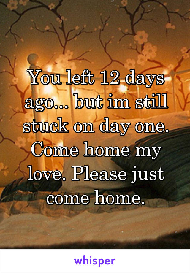 You left 12 days ago... but im still stuck on day one. Come home my love. Please just come home.