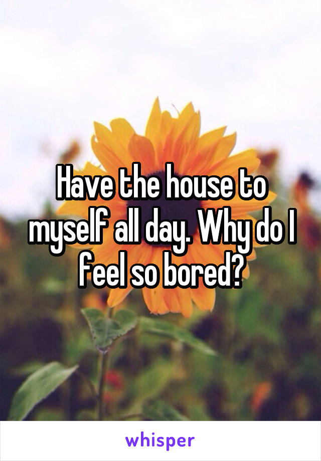 Have the house to myself all day. Why do I feel so bored?
