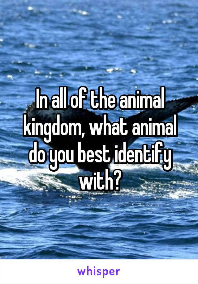 In all of the animal kingdom, what animal do you best identify with?