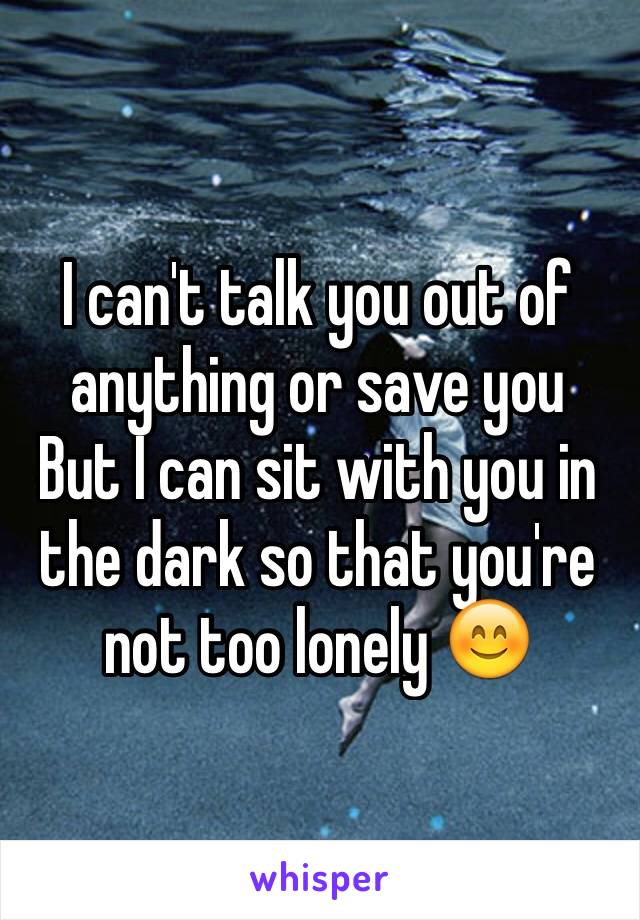 I can't talk you out of anything or save you But I can sit with you in the dark so that you're not too lonely 😊