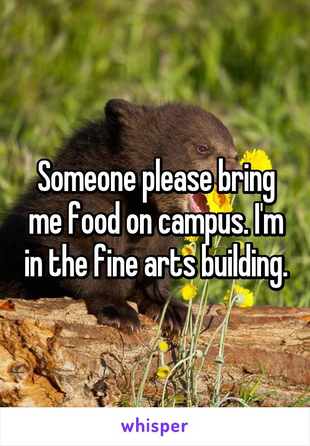 Someone please bring me food on campus. I'm in the fine arts building.