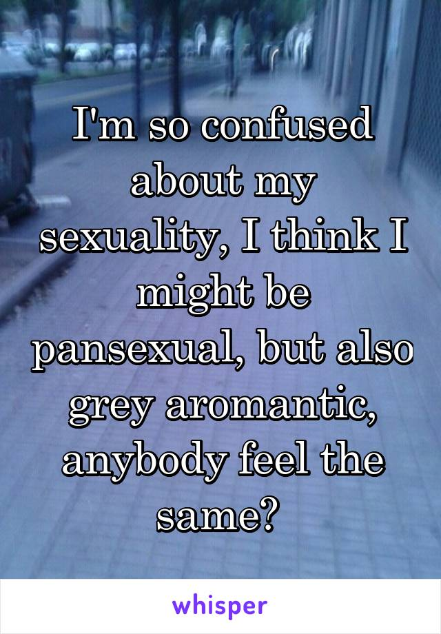 I'm so confused about my sexuality, I think I might be pansexual, but also grey aromantic, anybody feel the same?