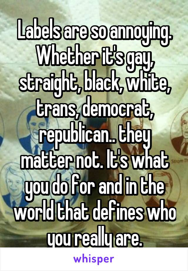 Labels are so annoying. Whether it's gay, straight, black, white, trans, democrat, republican.. they matter not. It's what you do for and in the world that defines who you really are.