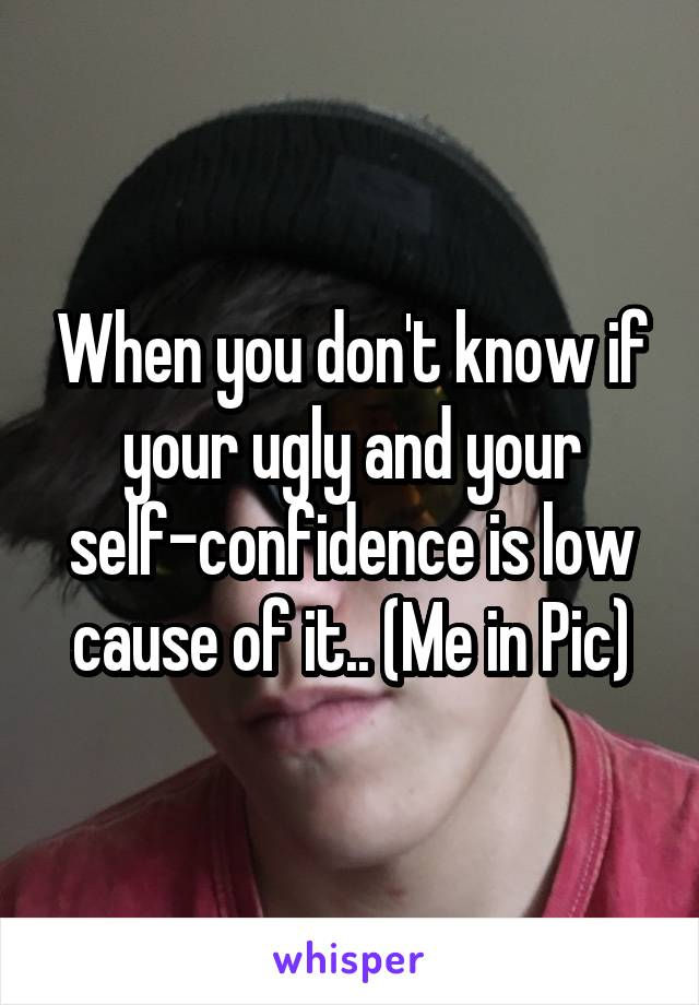 When you don't know if your ugly and your self-confidence is low cause of it.. (Me in Pic)