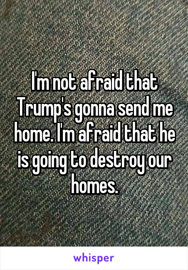 I'm not afraid that Trump's gonna send me home. I'm afraid that he is going to destroy our homes.