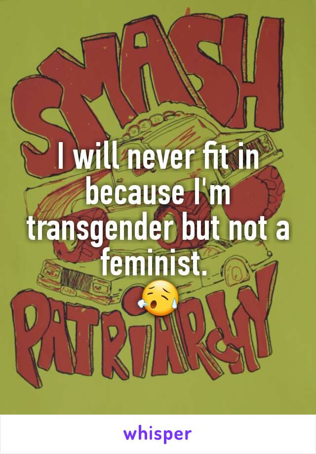 I will never fit in because I'm transgender but not a feminist.  😥