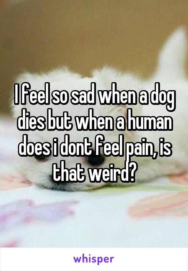 I feel so sad when a dog dies but when a human does i dont feel pain, is that weird?