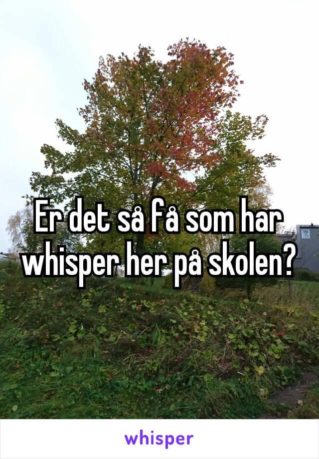 Er det så få som har whisper her på skolen?