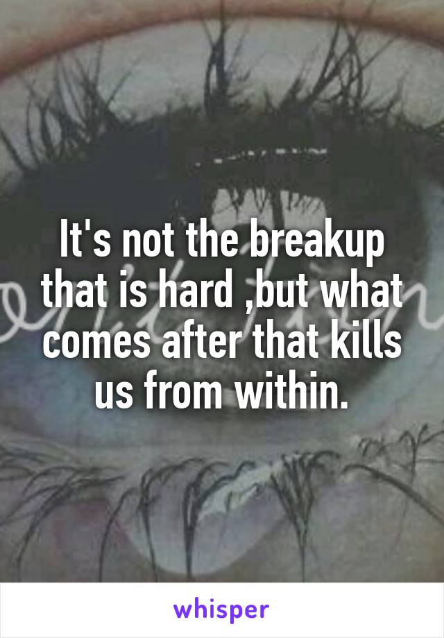 It's not the breakup that is hard ,but what comes after that kills us from within.
