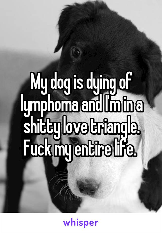 My dog is dying of lymphoma and I'm in a shitty love triangle. Fuck my entire life.